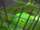 anschauungsmodell-messe-bsh-geschirrspueler-eco-tech-schlagheck-design